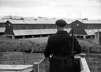 Denis Peschanski, Jorge Amat, La France des camps. 1938-1946, 85 minutes, Compagnie des Phares et Balises et CNRS Images. 1re diffusion sur France 2 le 8 avril 2010.