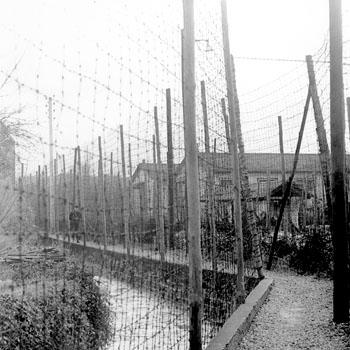 Chemin de ronde du centre pénitentiaire de Mauzac, 1953, Archives départementales de la Dordogne, 1141 W 239