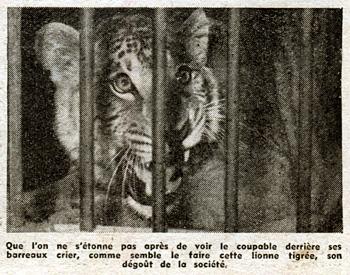 """Le Pèlerin du 27 mai 1951, """"Nos frères qui souffrent… en prison"""", Guy Mauratille"""