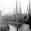 Noël 1947 au centre pénitentiaire de Mauzac… Poème de Camus :